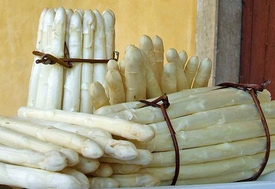 Asparago Bianco di Bassano del Grappa 570
