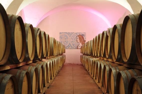Elena Walch Barrique cellar 2 570