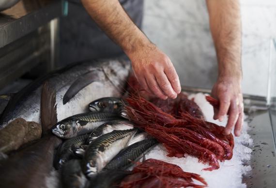 Paolo Secci chef pesci itin 570