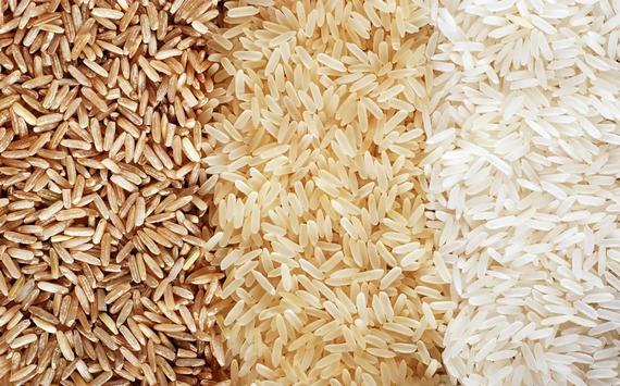 riso delta po igp 570