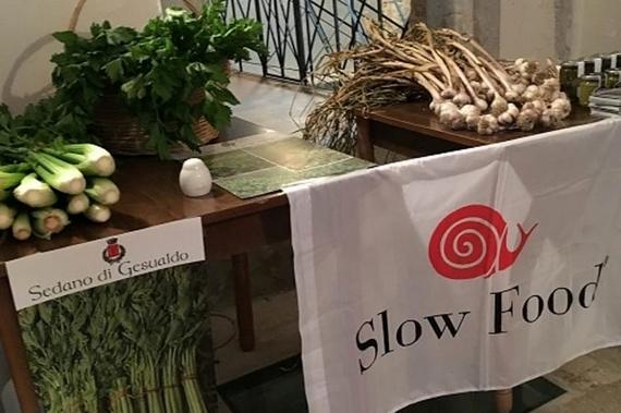 sedano di gesualdo slow food 570